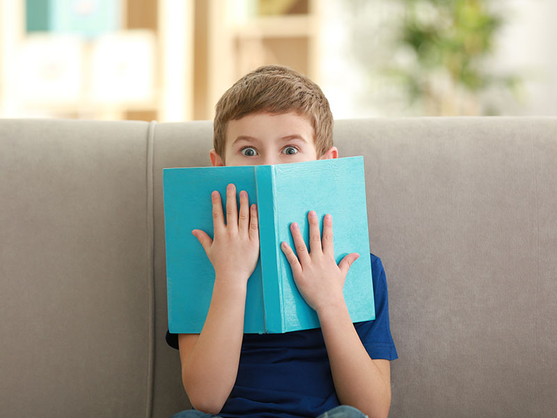 Boy sitting on a sofa with a book in his hands