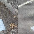 Discarded masks and gloves on pavement