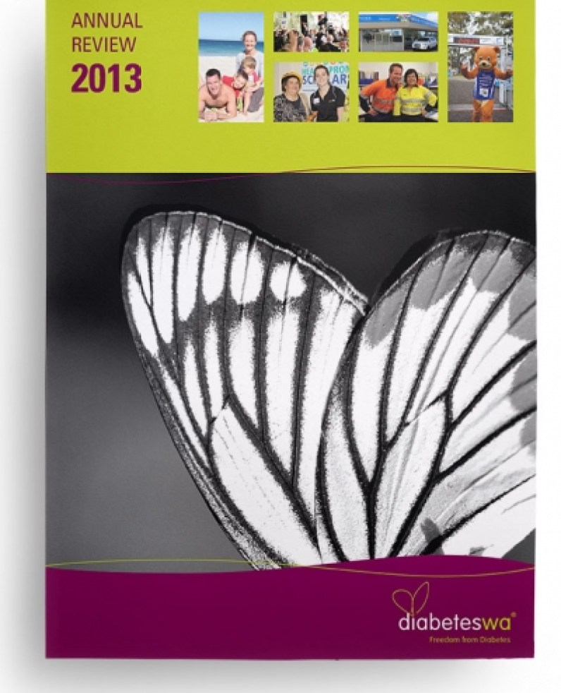 Annual Review 2013