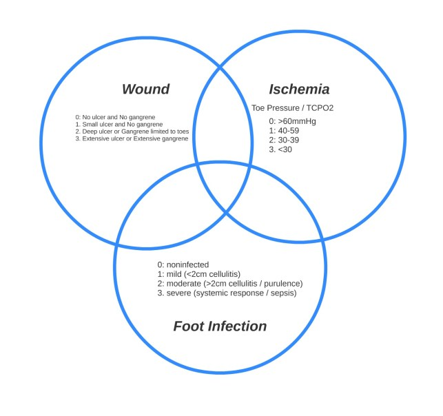 Tissue Loss / Ischemia and Foot Infection form 3 intersecting rings of risk that can be graded