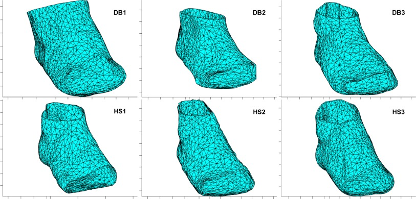 "Can we finally make a working ""virtual foot"" model for biomechanical research?"