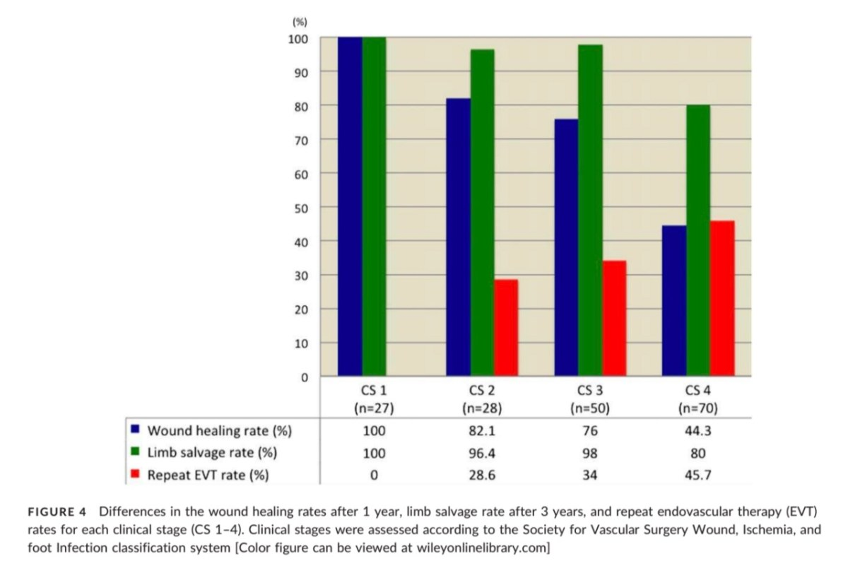 Outcomes of repeat below the knee endovascular therapy: report and WIFI score