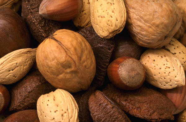 Nuts are a rich source of potassium