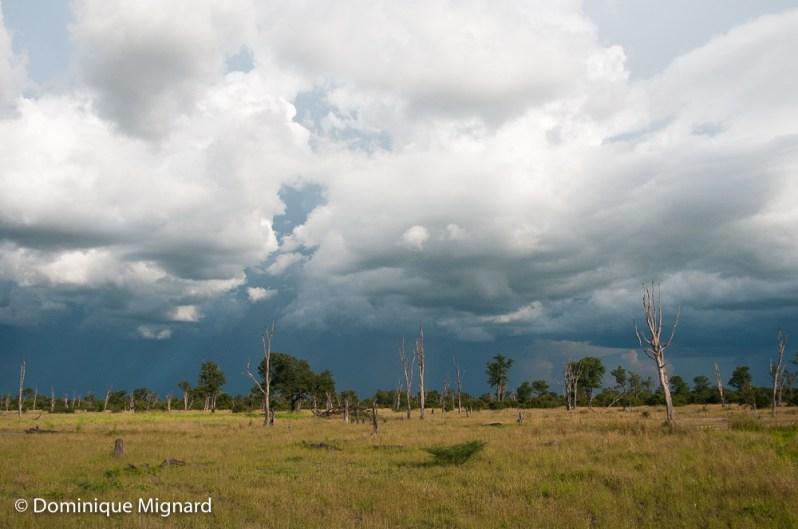 Des nuages prometteurs