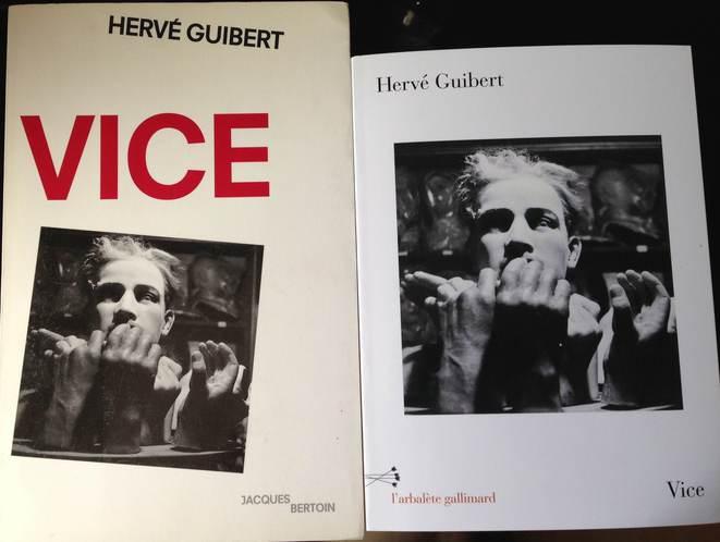Hervé Guibert Vice
