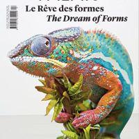 Le rêve dans tous ses états : « Le rêve des formes », exposition au Palais de Tokyo