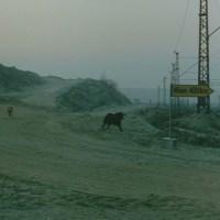 Face à lui-même : l'Allemagne de Jean-Luc Godard (épisode 2)