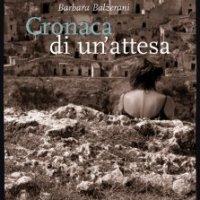 Réflexions sur des années de lutte (Barbara Balzerani : Camarade Lune)