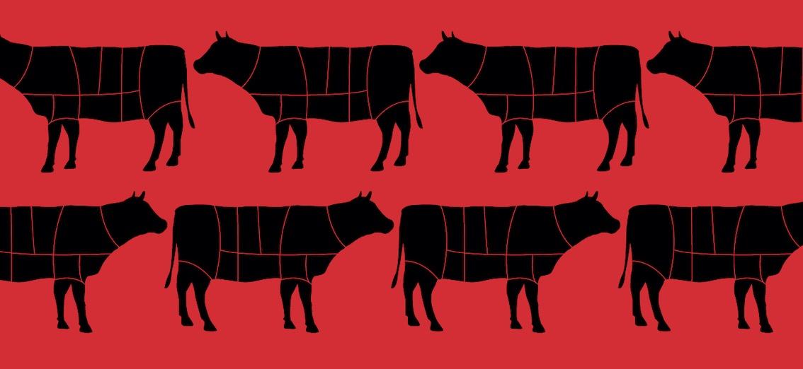 40 jours dans un abattoir: «Qui se soucie des damnés de la viande?» (Steak Machine)