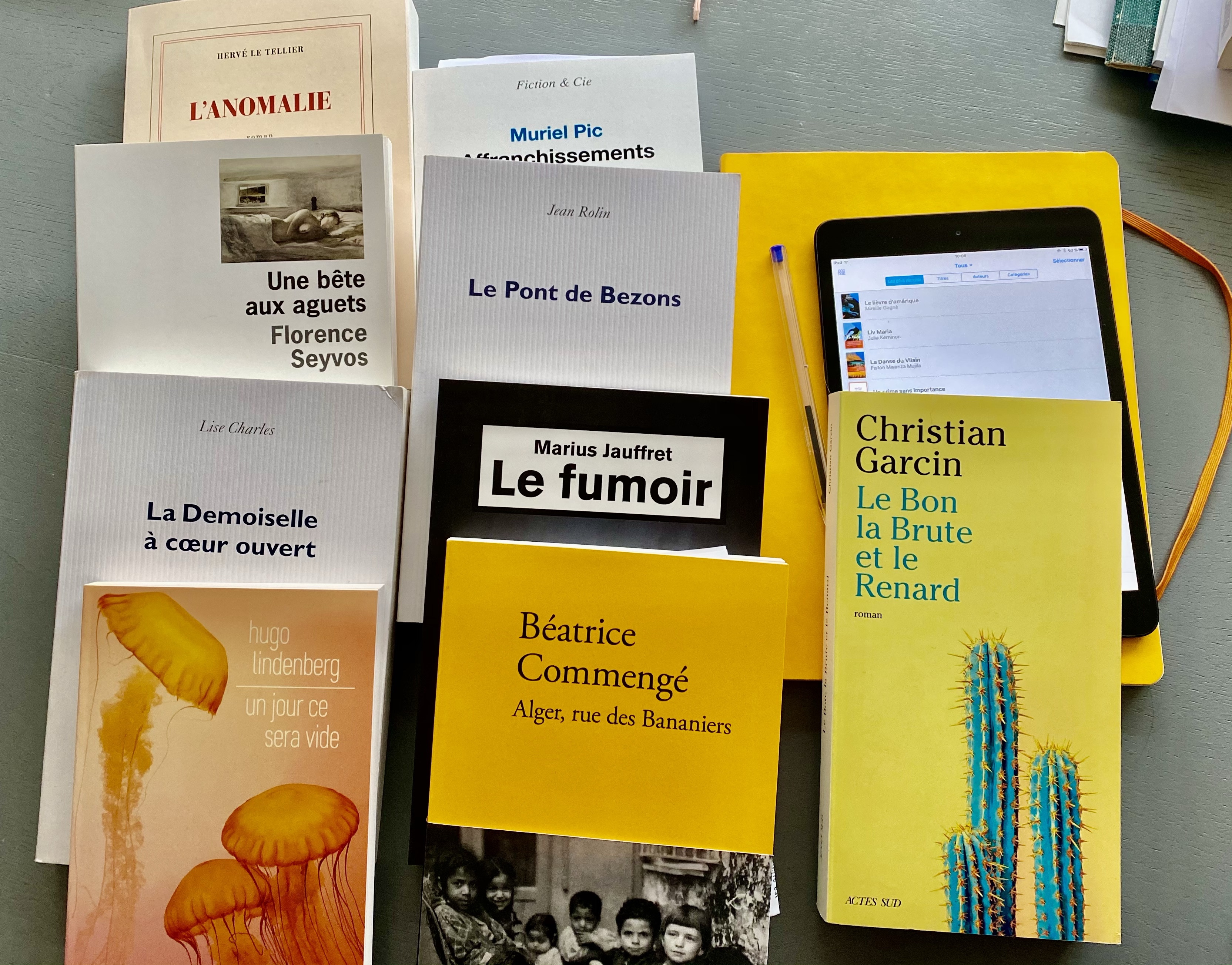 Challenge Prix Wepler 2020 : critique des livres en lice