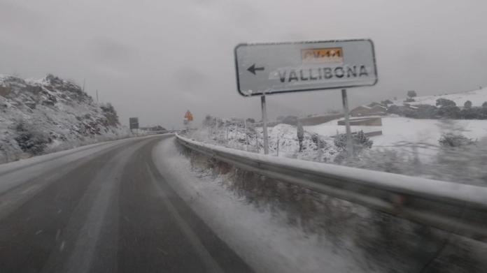 Neu a Vallibona