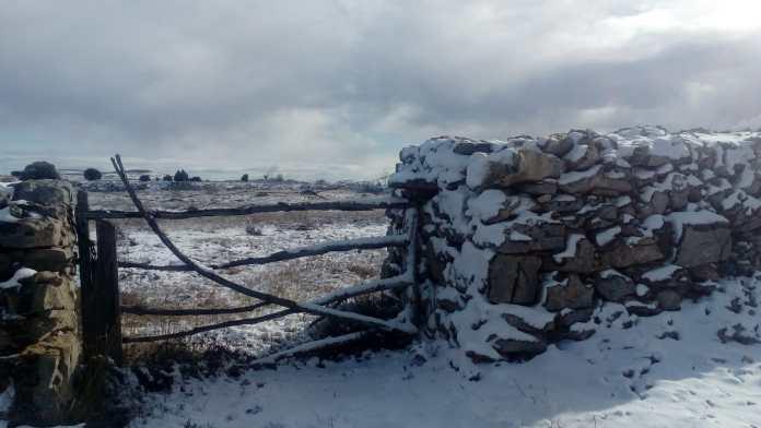 Neu a Vilafranca
