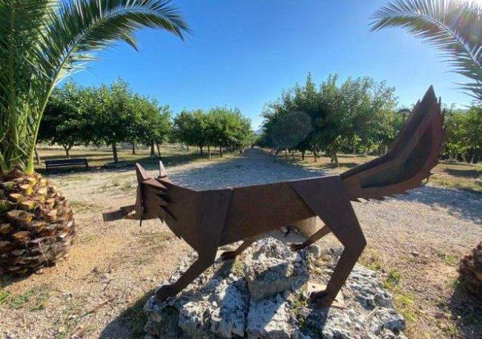 Tírig construirà una pista de pàdel al Parc de la Raboseta