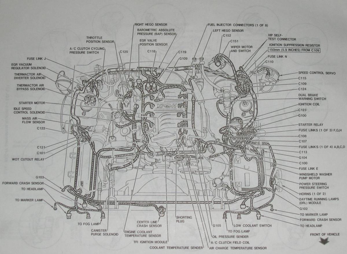 1995 ford mustang gt engine wiring diagram 94-95 mustang 5.0 detailed mustang engine layout #13