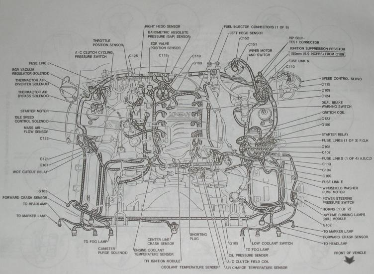 Picture of Mustang Engine Layout