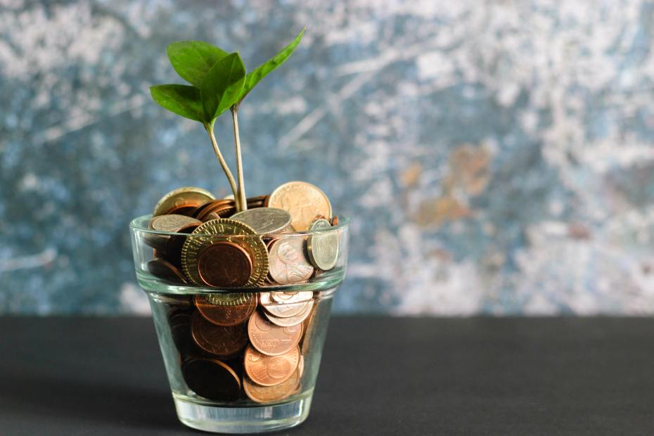 A seedling grows from a glass filled with coins.