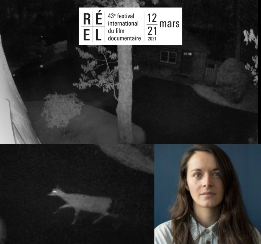 NIGHTVISION: İzleniyor Olmanın Dayanılmaz Artçı Şokları (Cinéma du Réel – 2)