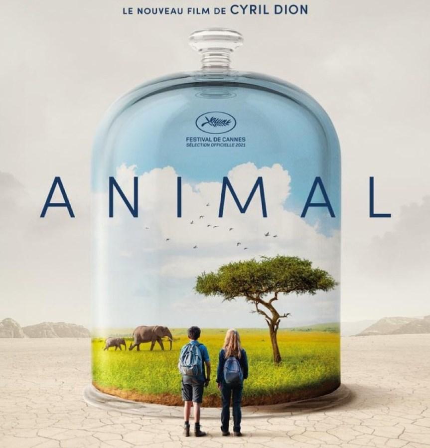 Başka Bir Yaşam Mümkün: ANIMAL