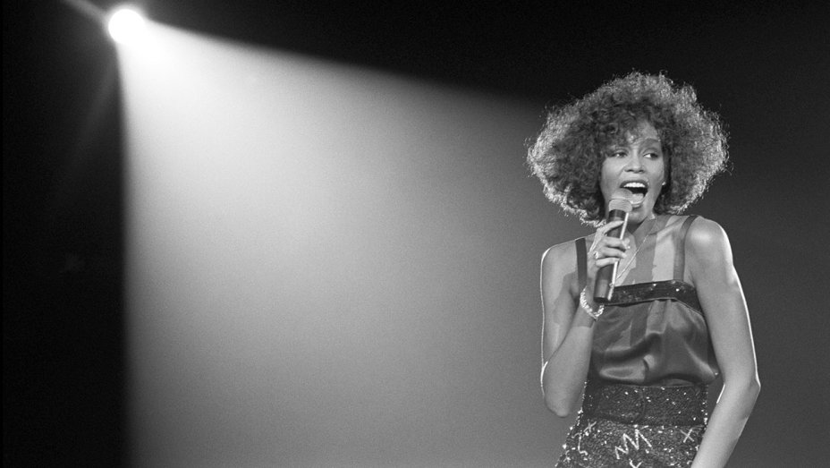 dialna - whitney houston