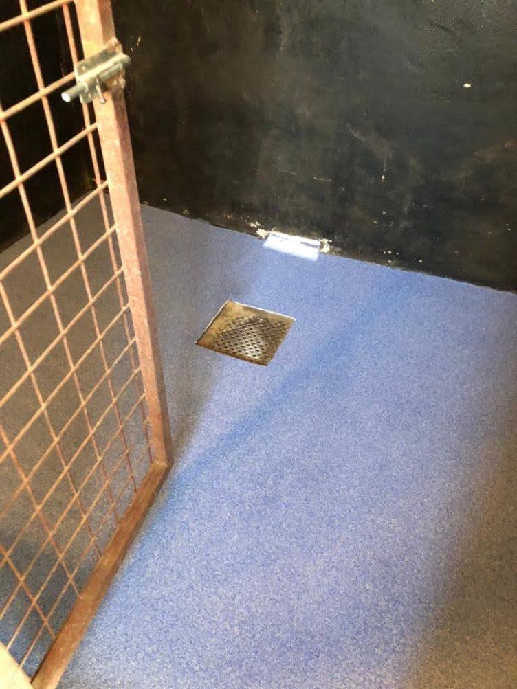 Krasbestendige vloer hondenpension