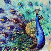 Peacock Portrait Diamond Painting Kit