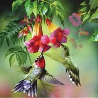 Hummingbird Diamond Painting Kit