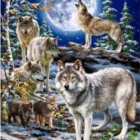 Full Moon Wolf Diamond Painting Kit