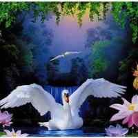 Swan Flowers Diamond Painting Kit
