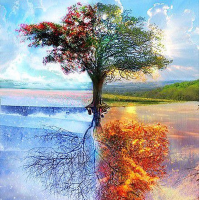 Four Seasons Tree Diamond Painting Kit