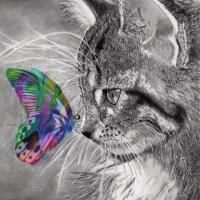 Butterfly Cat Diamond Painting Kit