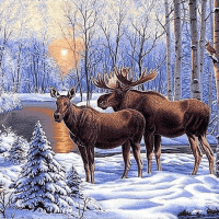 Moose Winter Lake Diamond Painting Kit