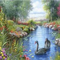 Black Swan Lake Diamond Painting Kit
