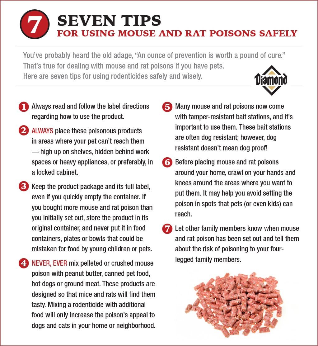 7 Tips for Using Mouse Poison Safely Around Pets Chart | Diamond Pet Foods