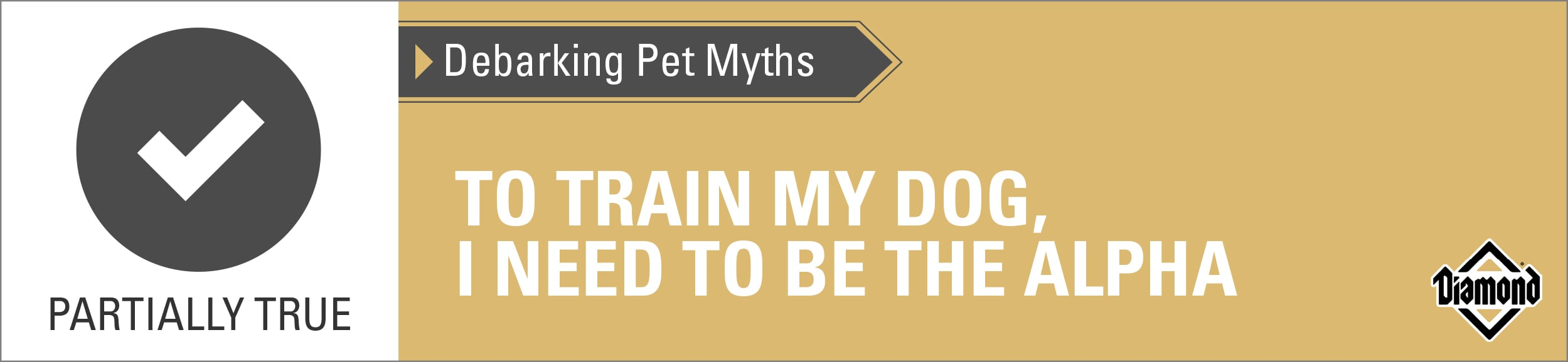 Partially True: To Train My Dog, I Need to Be the Alpha   Diamond Pet Foods