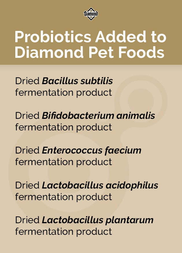 Probiotics Added to Diamond Pet Foods | Diamond Pet Foods