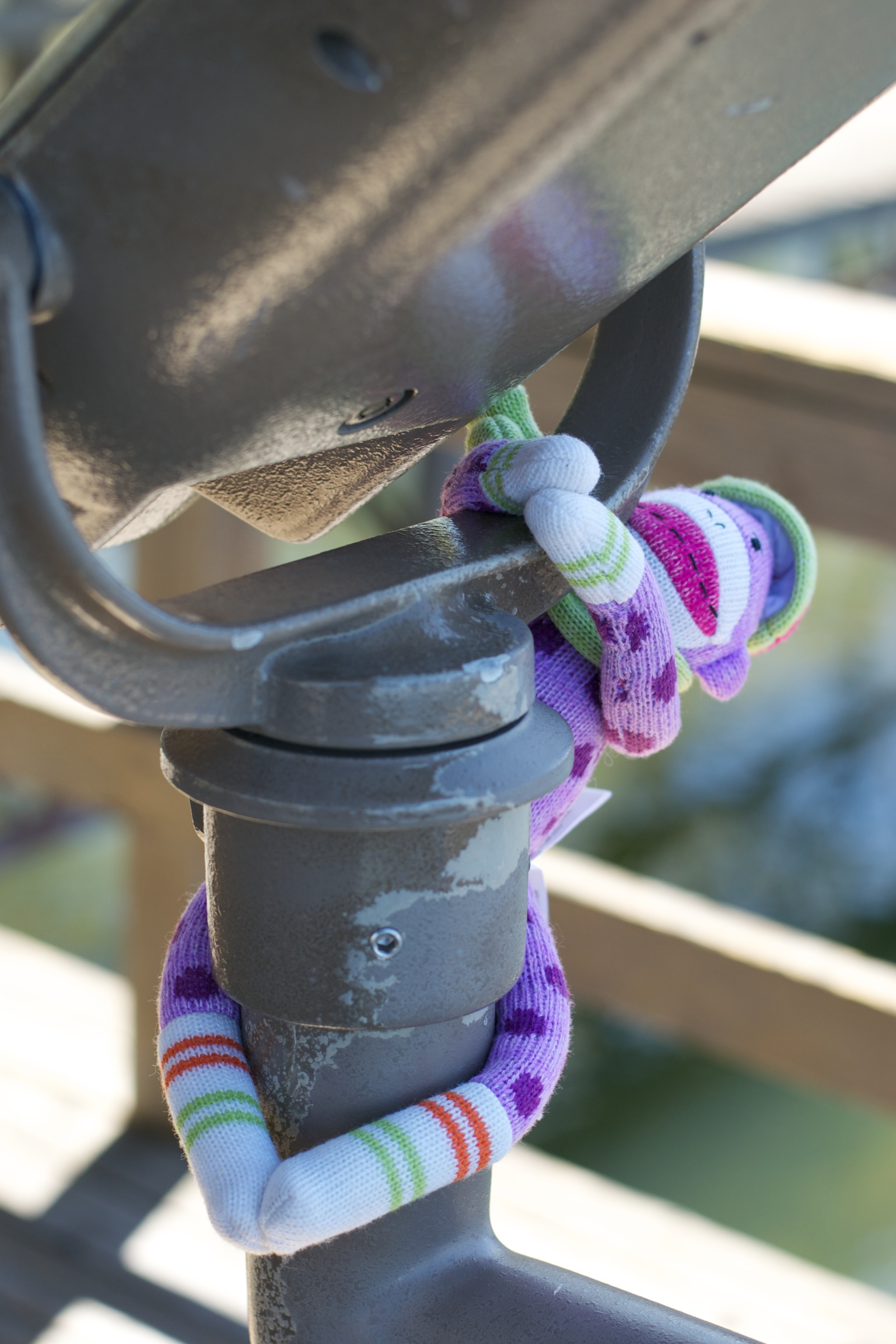 The adventures of Dottie, the sock monkey: Barr Lake State Park