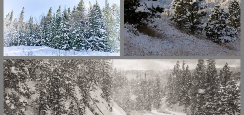 Tips for taking Photographs in Winter without being completely miserable