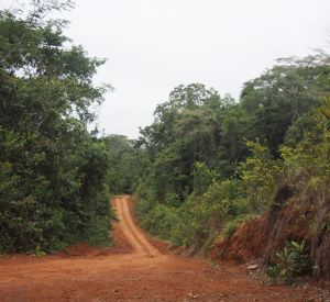 Dirt Road in Liberia