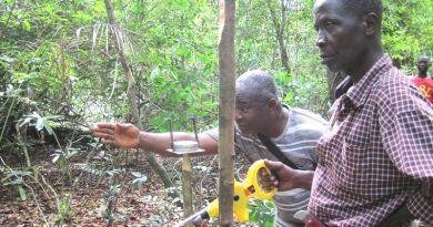 リベリア 測量 ダイヤモンド採掘地域