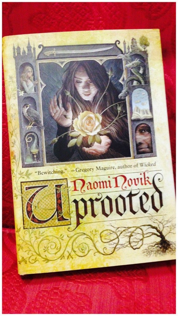 My review of Uprooted by Naomi Novik, a truly stunning work of fantasy with a strong female lead that every fan of the genre should read.