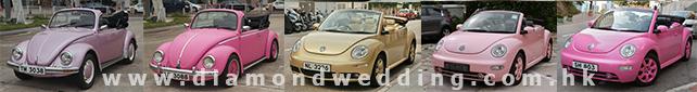 wedding car - 甲蟲