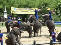 Samphran Elephant Ground