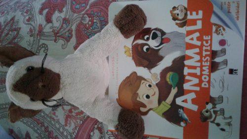 Enciclopedia celor mici- Animale domestice, curiozități ale copiilor față de tot ce îi înconjoară!