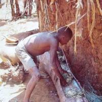 Brewing Banana Beer in Colonial Burundi