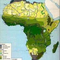 Cuisine and Crops in Tropical Africa – Colonial and Contemporary