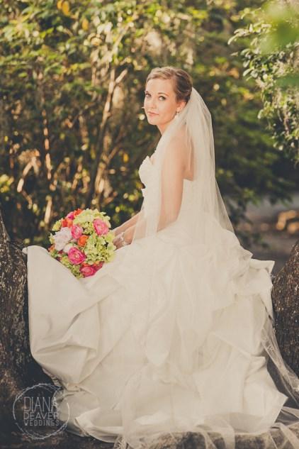 Bridal Portrait Magnolia Plantation Charleston Wedding photographer (33)