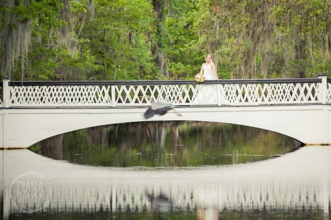 Bridal Portrait Magnolia Plantation Charleston Wedding photographer (51)