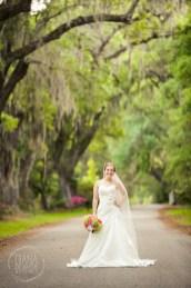 Bridal Portrait Magnolia Plantation Charleston Wedding photographer (68)
