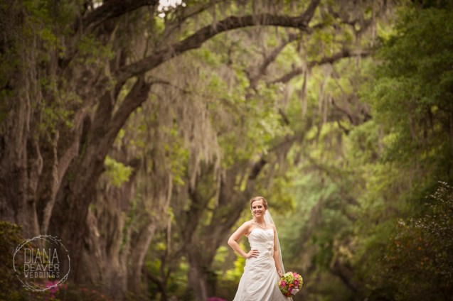 Bridal Portrait Magnolia Plantation Charleston Wedding photographer (76)