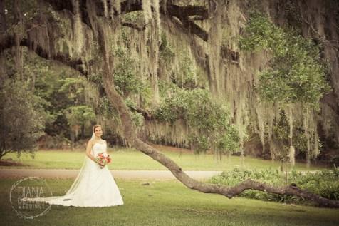 Bridal Portrait Magnolia Plantation Charleston Wedding photographer (92)